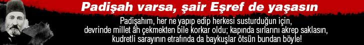 Gazeteport
