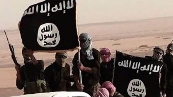 IŞİD'e yaban domuzları saldırdı