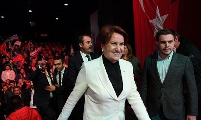 Yeni Partide 'Bozkurt ve 'Başbuğ' Yasak