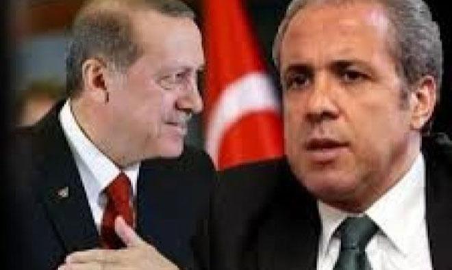 Şamil Tayyar Erdoğan'ı Hedef mi Gösterdi?