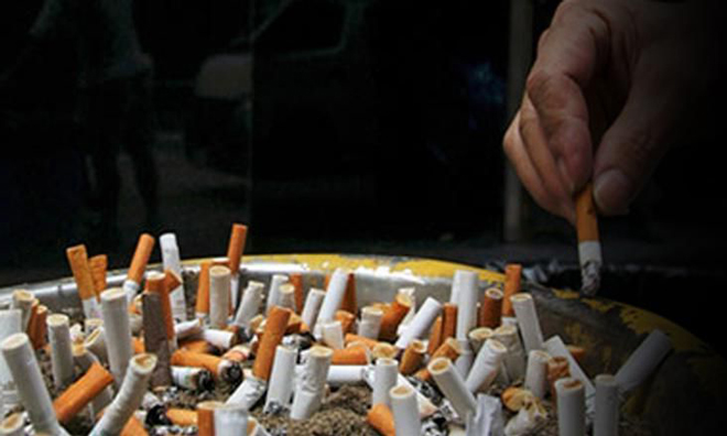Sigaranın Zararlı Etkisini Azaltan 2 Besin