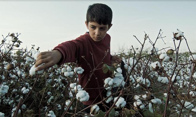 İş Cinayeti Kurbanı Çocuk İşçi Ahmet Yıldız Anısına: Şekirê Pembû