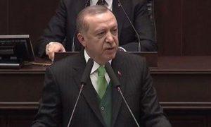 Erdoğan Havuzcuların Yalanlarına Sığındı