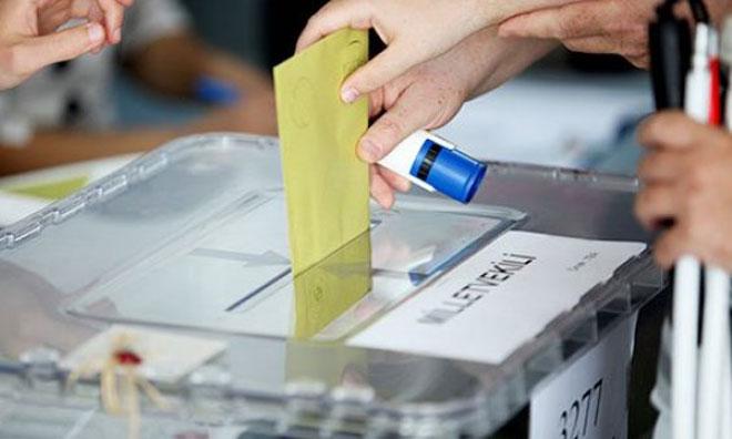 Oyların Taşınmasında 'Büyük Ustalık'
